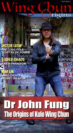 Wing Chun Origins Issue 3