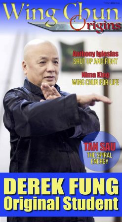 Wing Chun Origins Issue 6 Derek Fung